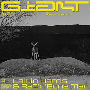 Calvin Harris, Rag'n'Bone Man - Giant (Acapella